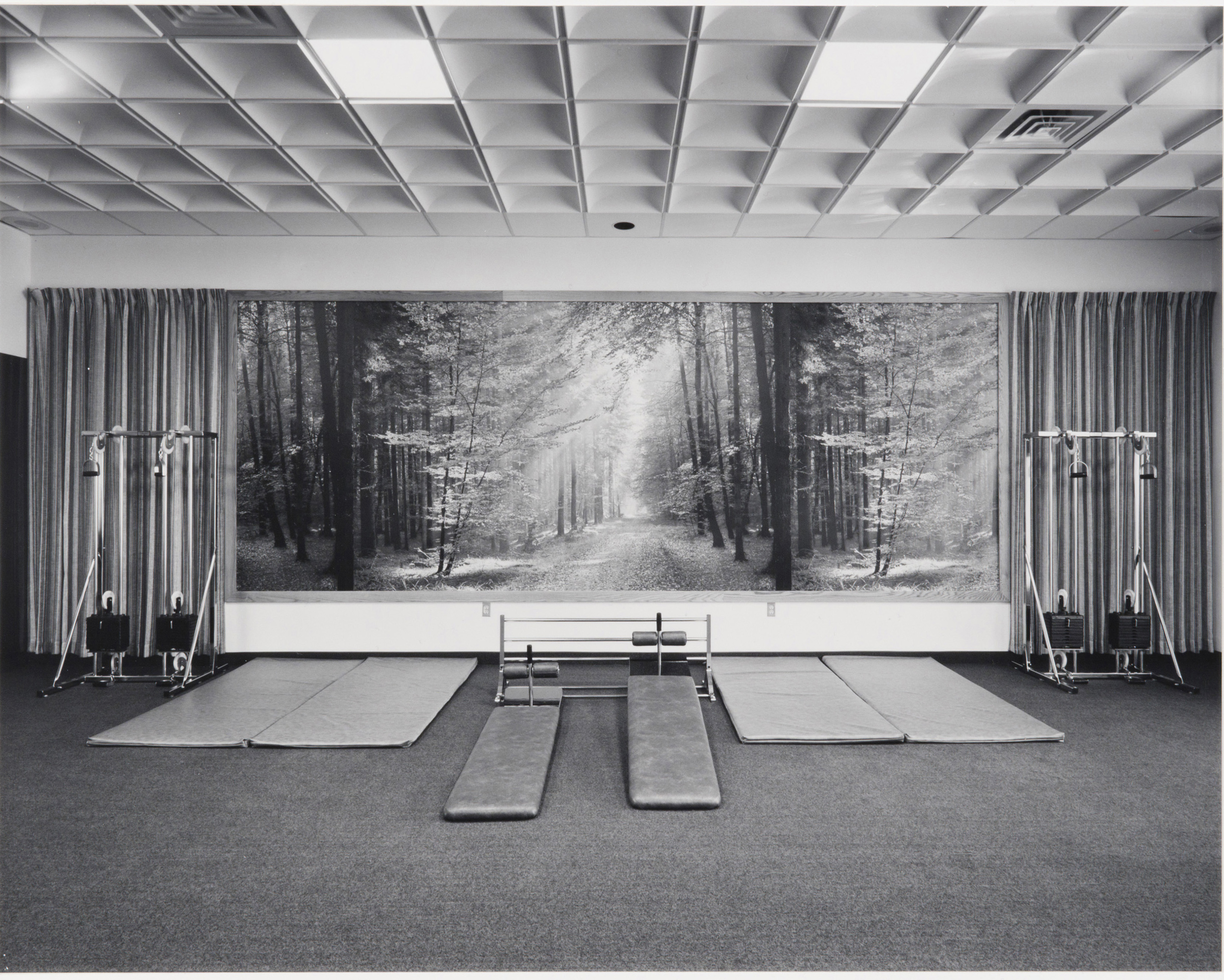 Lynne Cohen photograph of a low-ceilinged fitness club interior with gym mats and weight racks arranged along a wall covered with a forest photomural
