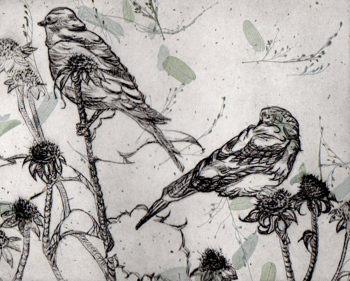 Dry point engraving of two small birds perched on branches, printed in black ink on a floral textured paper
