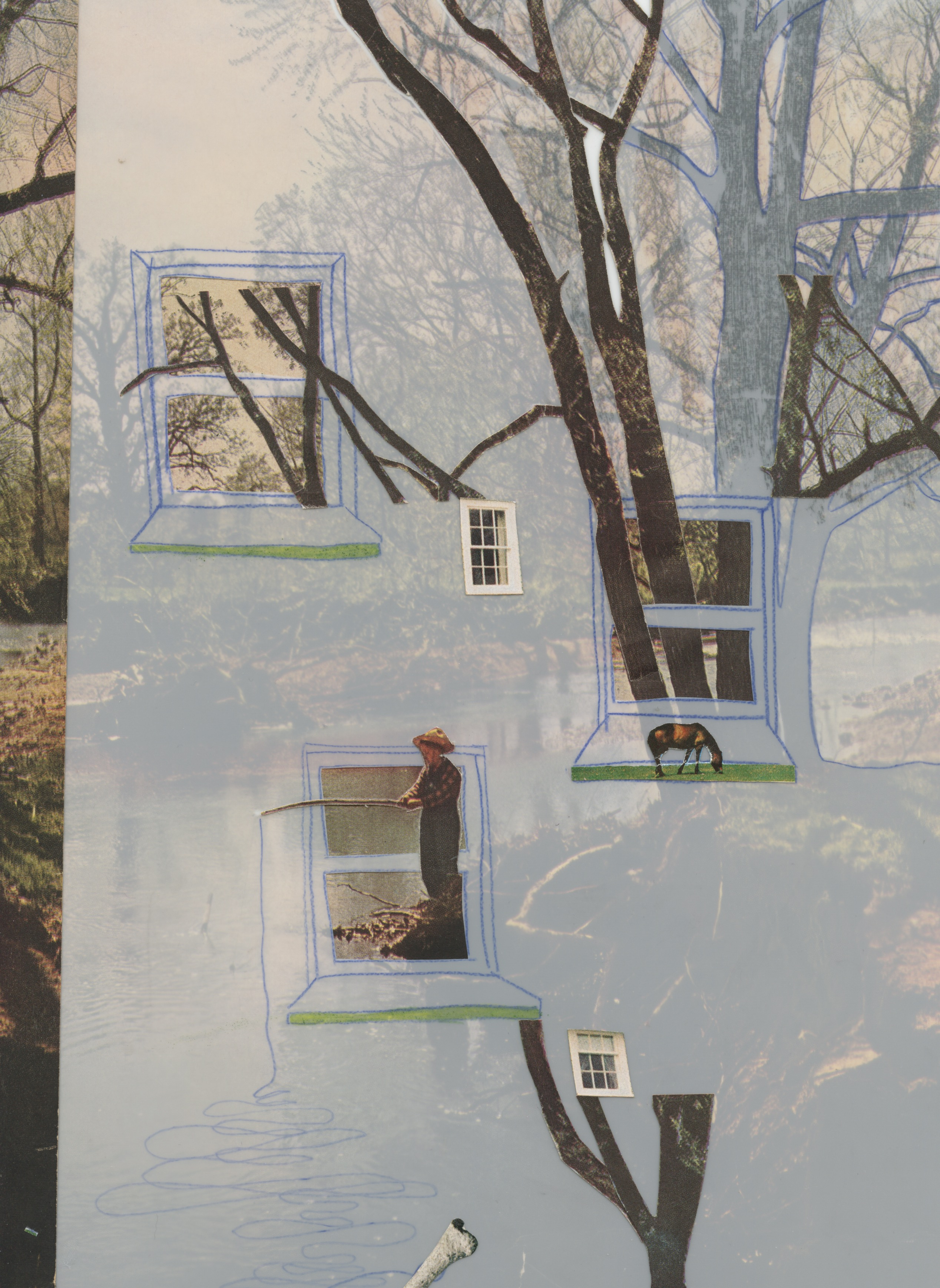 A layered photocollage of bare trees emerging from various drawn and collaged windows overlaid on a landscape image with translucent vellum