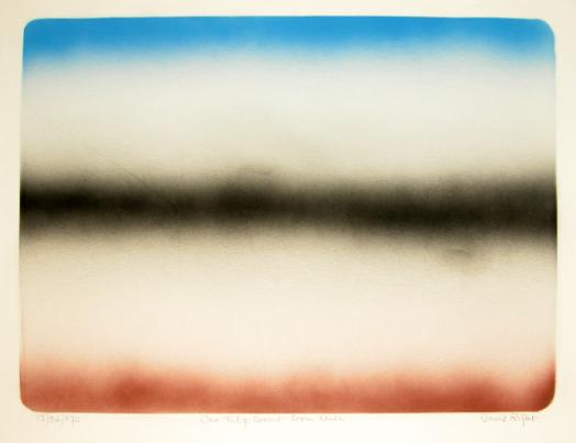 David Rifat's One Tulip Doesn't Seem Much is a pale silkscreen print of blurred horizon lines in red ochre, black and blue