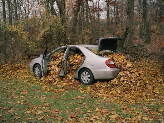Neil Goldberg, My Father's Camry Filled with Leaves, 2009 depicts a silver Toyota Camry parked at the edge of an autumn forest, its doors and trunk open and filled to overflowing with autumn leaves